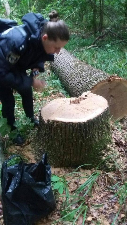 На Чернігівщині лісівники виявили зловмисників із незаконною «здобиччю» (Фото)