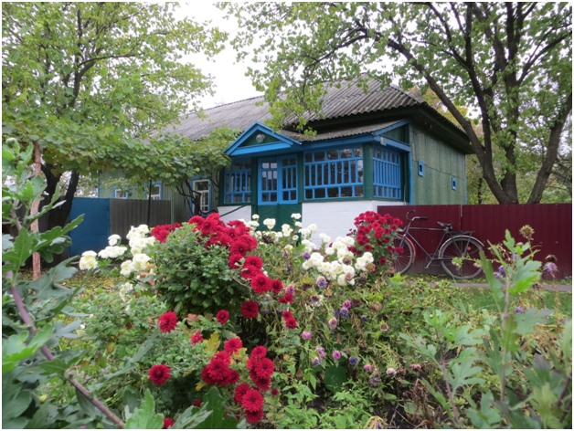 Після смерті хуторів: мальовничі реалії села на Чернігівщині (Фото)