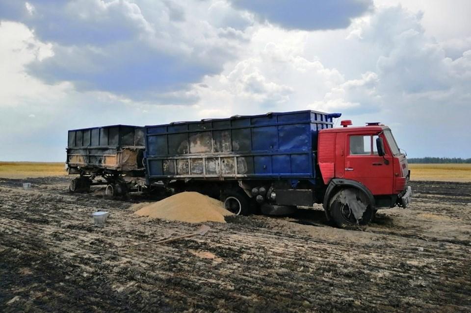 На Чернігівщині на полі вигоріли 10 га жита (Фото)