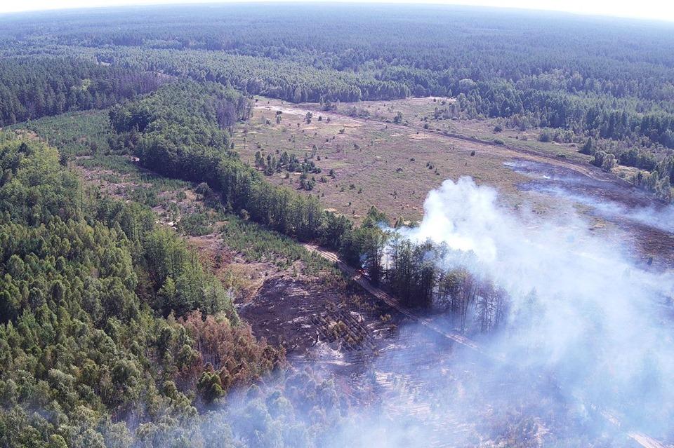 Упродовж доби рятувальники ліквідували 31 пожежу у природних екосистемах