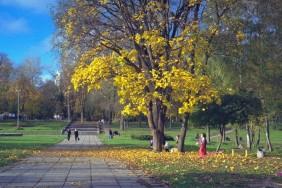 Чернігів._Міський_сад._Золотиста_осінь.