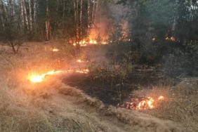 Пожежа Десна3