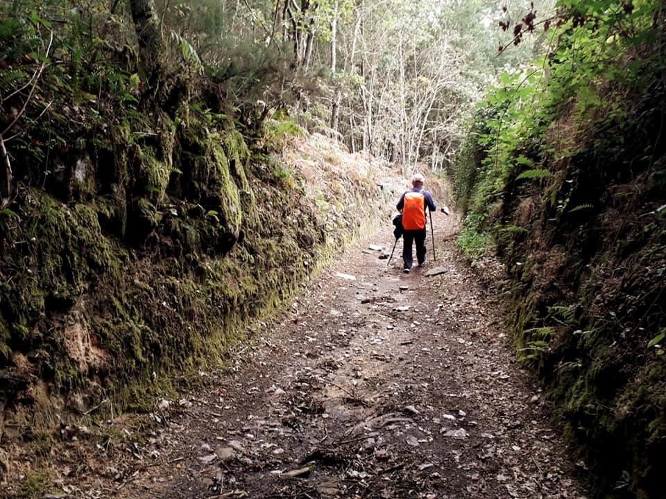 Подружжя пенсіонерів із Чернігова здолало 320 км Шляху святого Якова в Іспанії (Фото)