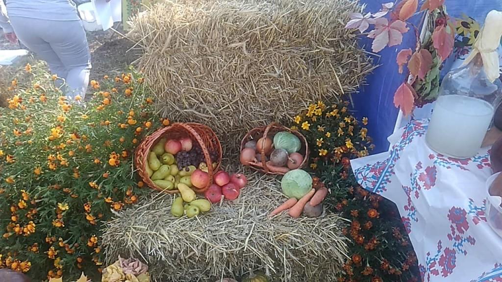 Осінній фест: на Чернігівщині пройшло грандіозне свято (Фото)