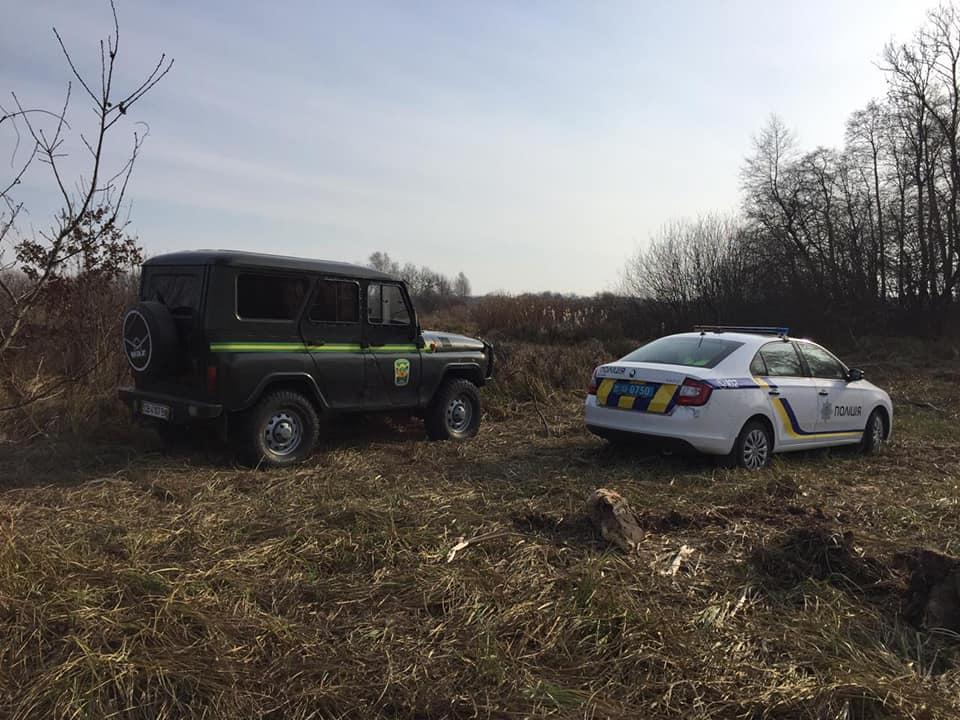 На Чернігівщині вбили червонокнижну тварину (Фото)