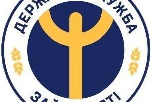 Логотип ДСЗ