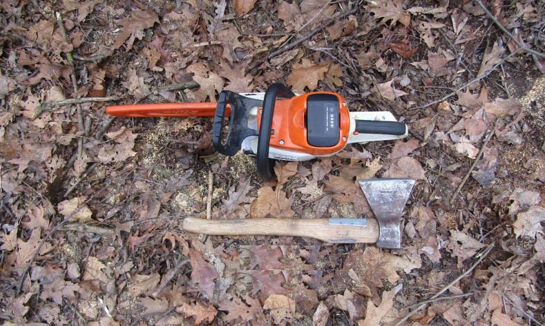 Жителів Прилуччини викрили у незаконній порубці дерев (Фото)