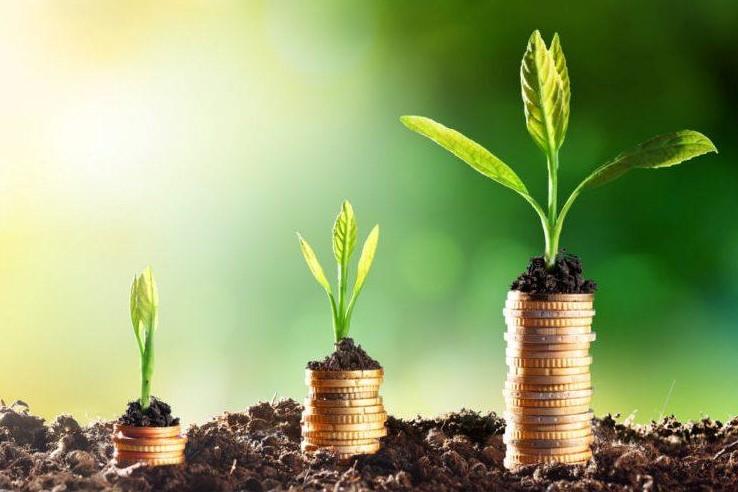 Krediti-razvojnog-fonda-Vojvodine-20760