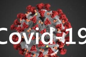 kovid-19-koronavirus