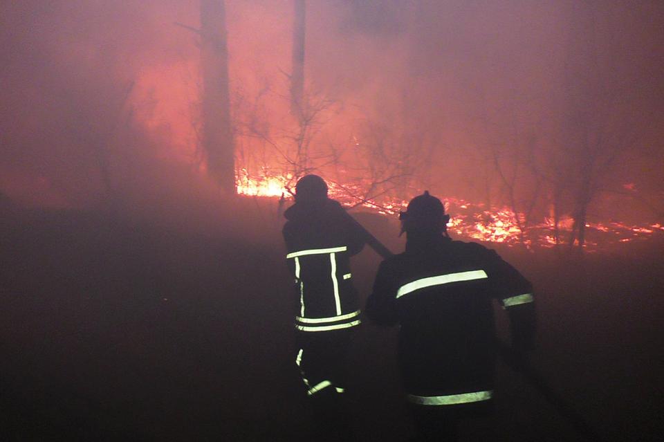 У Козелецькому районі другу добу горить ліс (Фото)