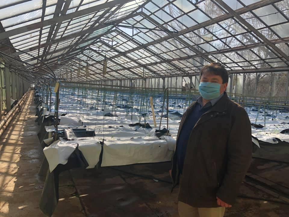 На Чернігівщині запрацювала єдина в Україні промислова гідропонна теплиця для картоплі