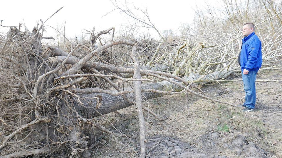 У Сосниці обстежили урочища та луги й виявили збитків на понад мільйон гривень