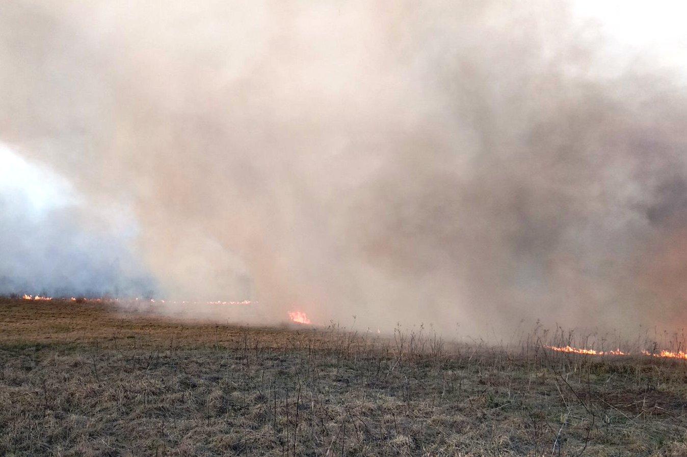 Чернігівщина у вогні: за добу рятувальники ліквідували 40 пожеж (Фото)