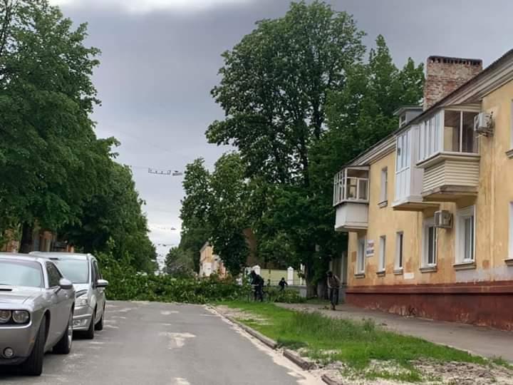Наслідки буревію у Чернігові: автівку пробило дерево (Фото, Відео)