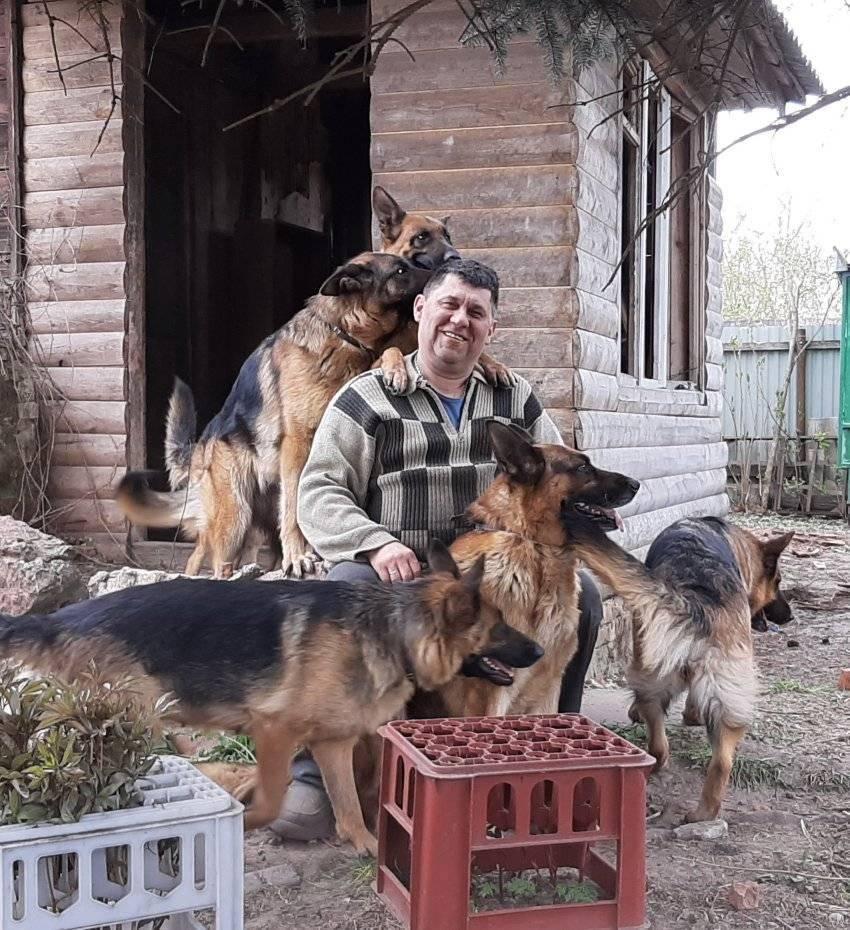Вірші для чотирилапих і повний пансіон: собачий рай у Добрянці