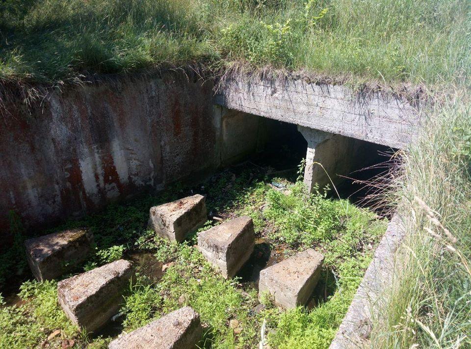 Під Черніговом пересихає ставок (Фото)