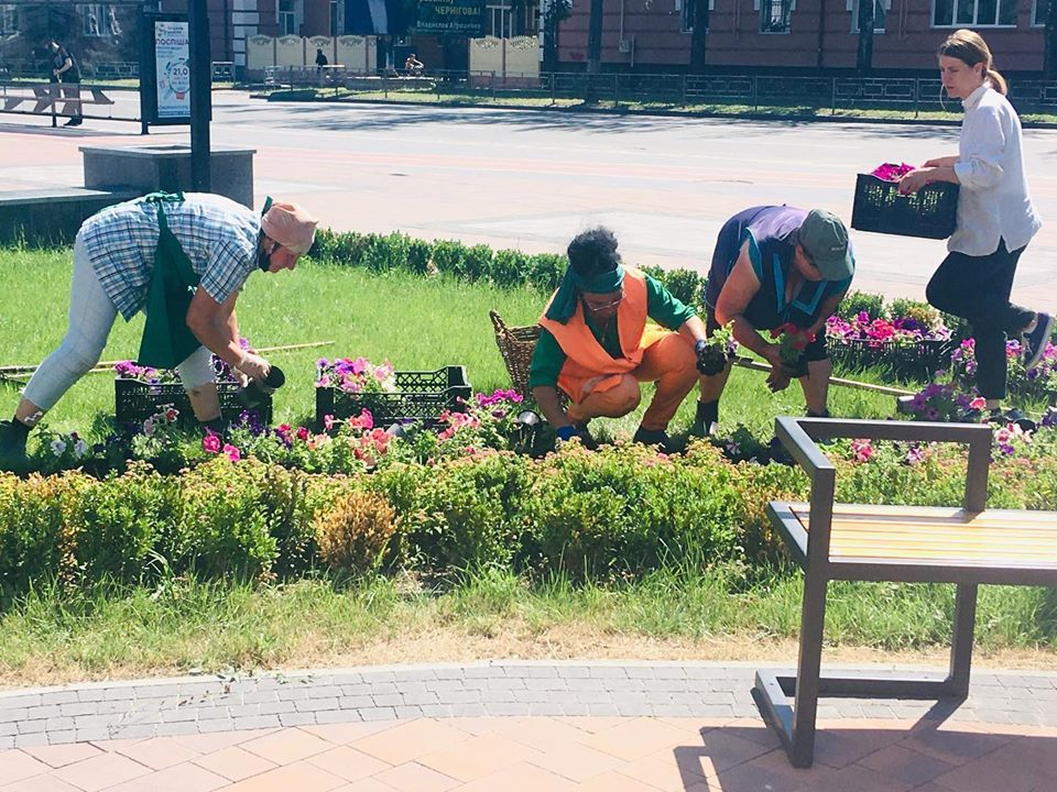 Клумбу біля міського палацу культури прикрасили різнокольоровими квітами (Фото)