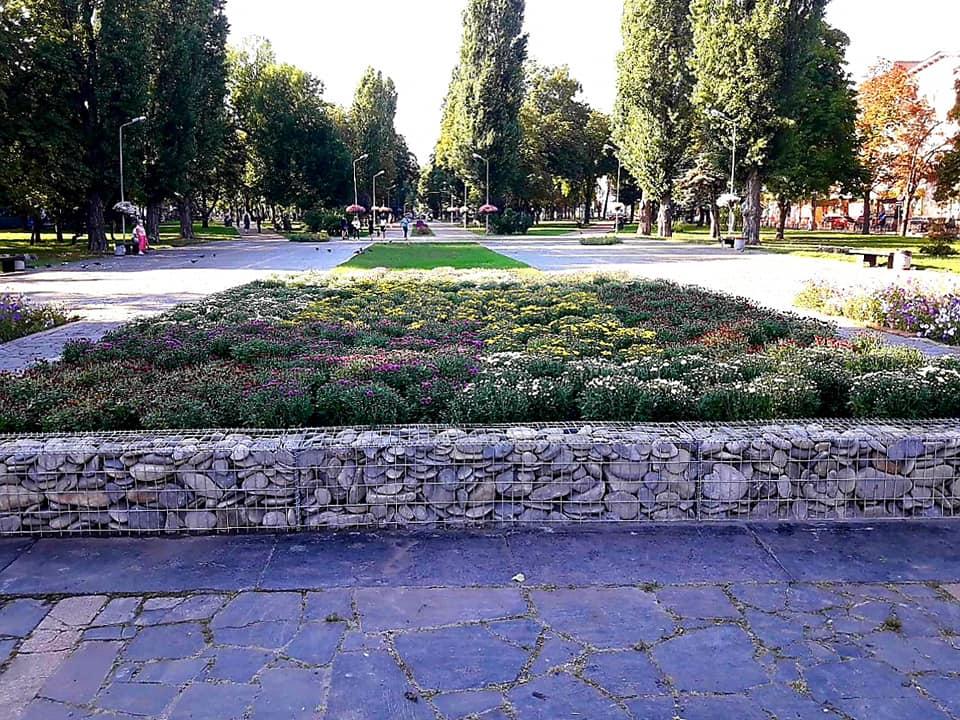 На місці знесеного пам'ятника Леніну в Чернігові розквітнуть 300 кущів хризантем (Фото)
