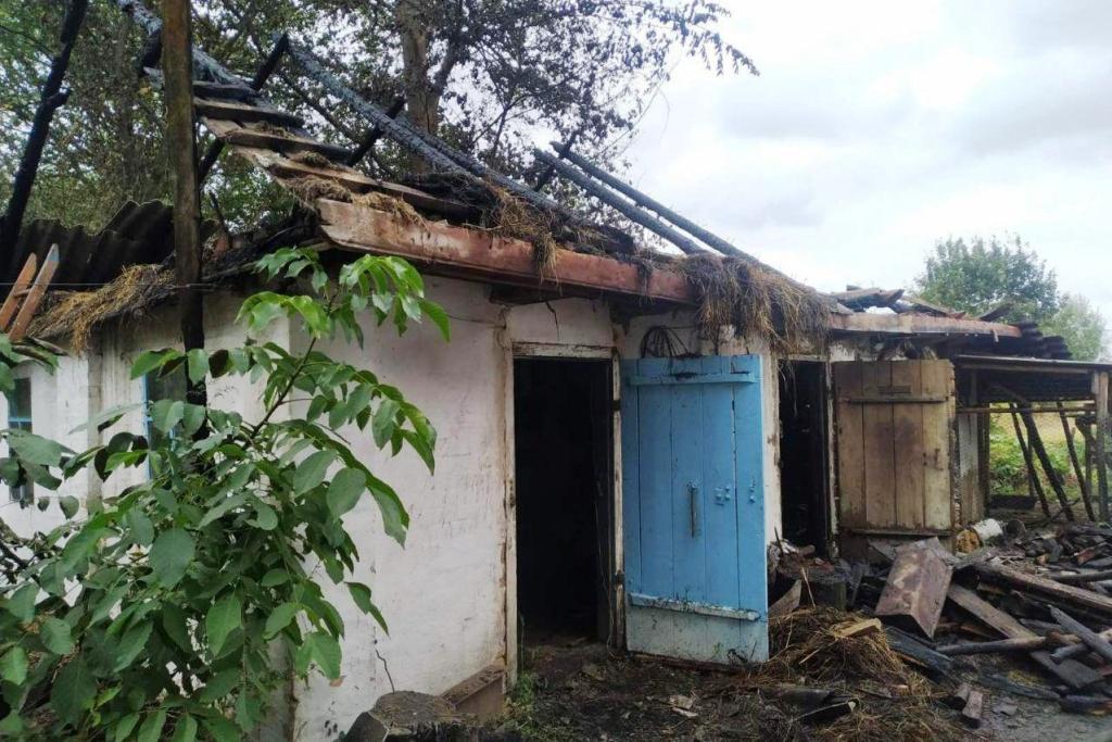 Упродовж минулої доби вогнеборці Чернігівщини ліквідували 20 пожеж (Фото)