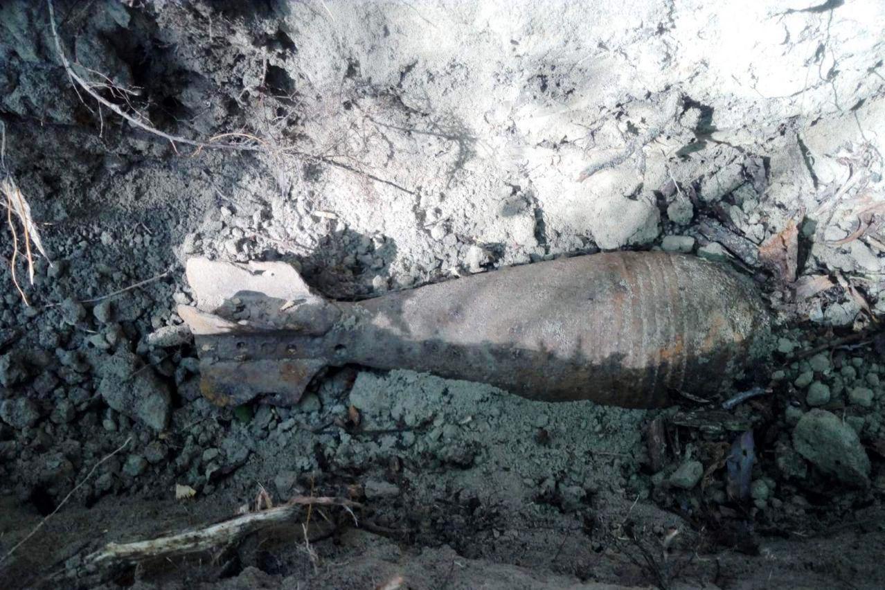 У Козелецькому районі сапери ДСНС знищили мінометну міну часів Другої світової війни (Фото)