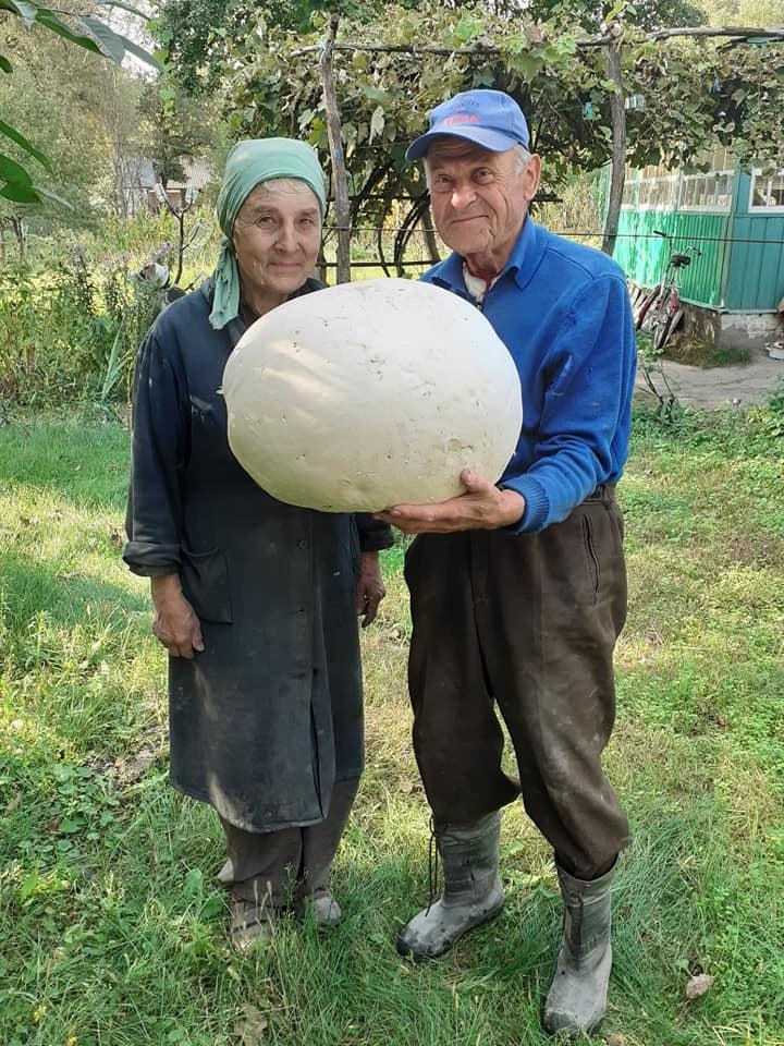 Житель Чернігівщини знайшов гриб вагою 7 кг (Фотофакт)