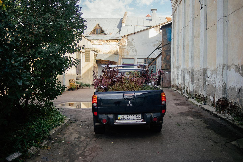 Створення мініферми в центрі Чернігова – на завершальному етапі (Фото)