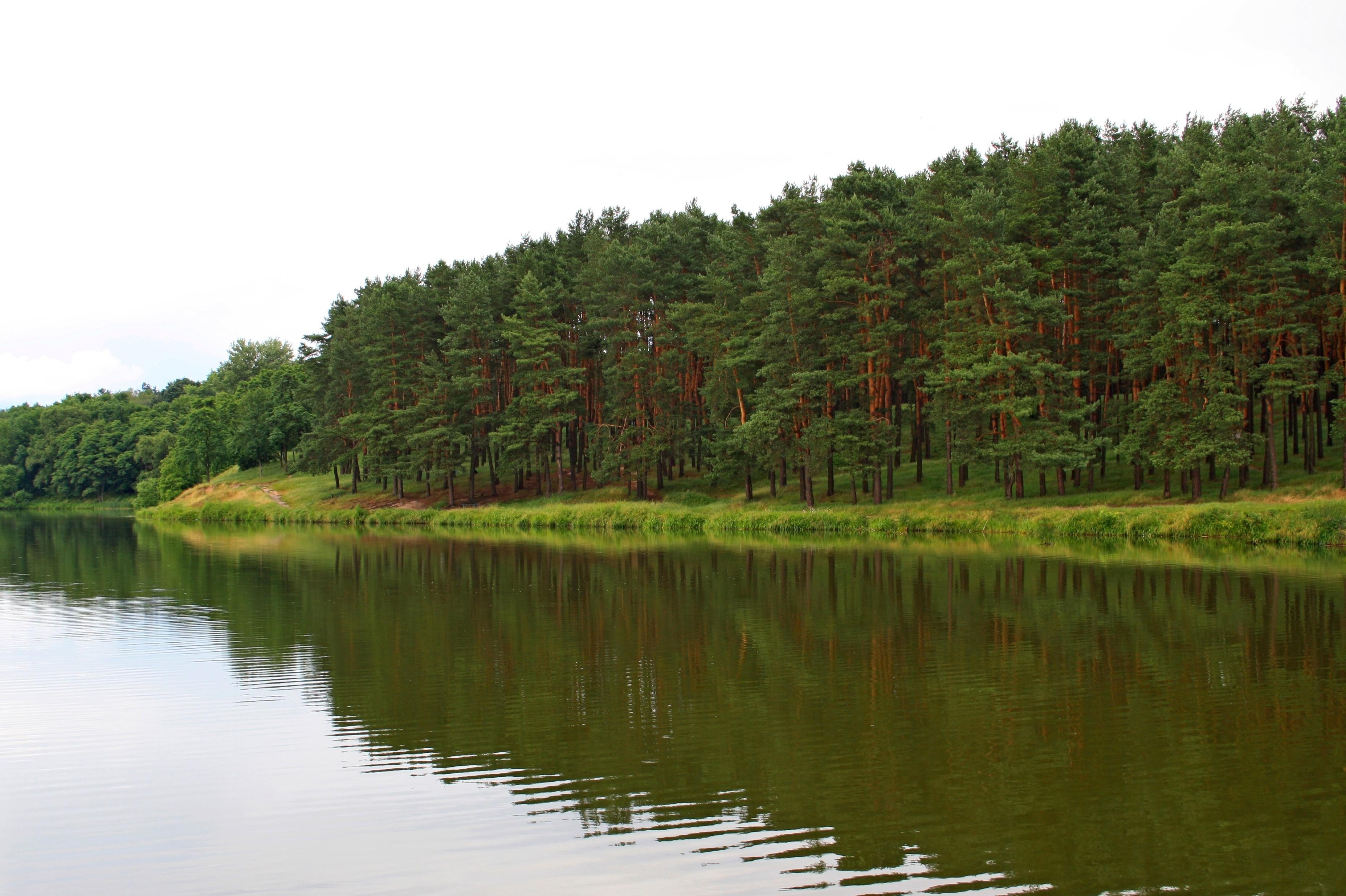 Регіональний_ландшафтний_парк_«Ялівщина»