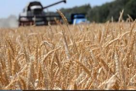 picture2_agrarii-v-2018-go_349726_p0
