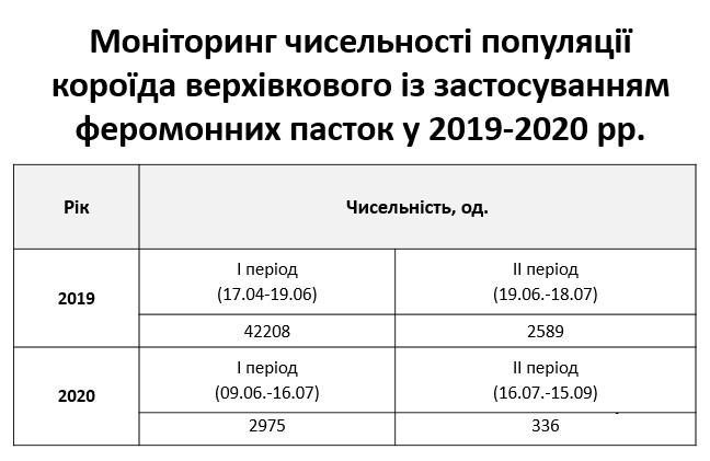 2020_11_02_koroyid_02
