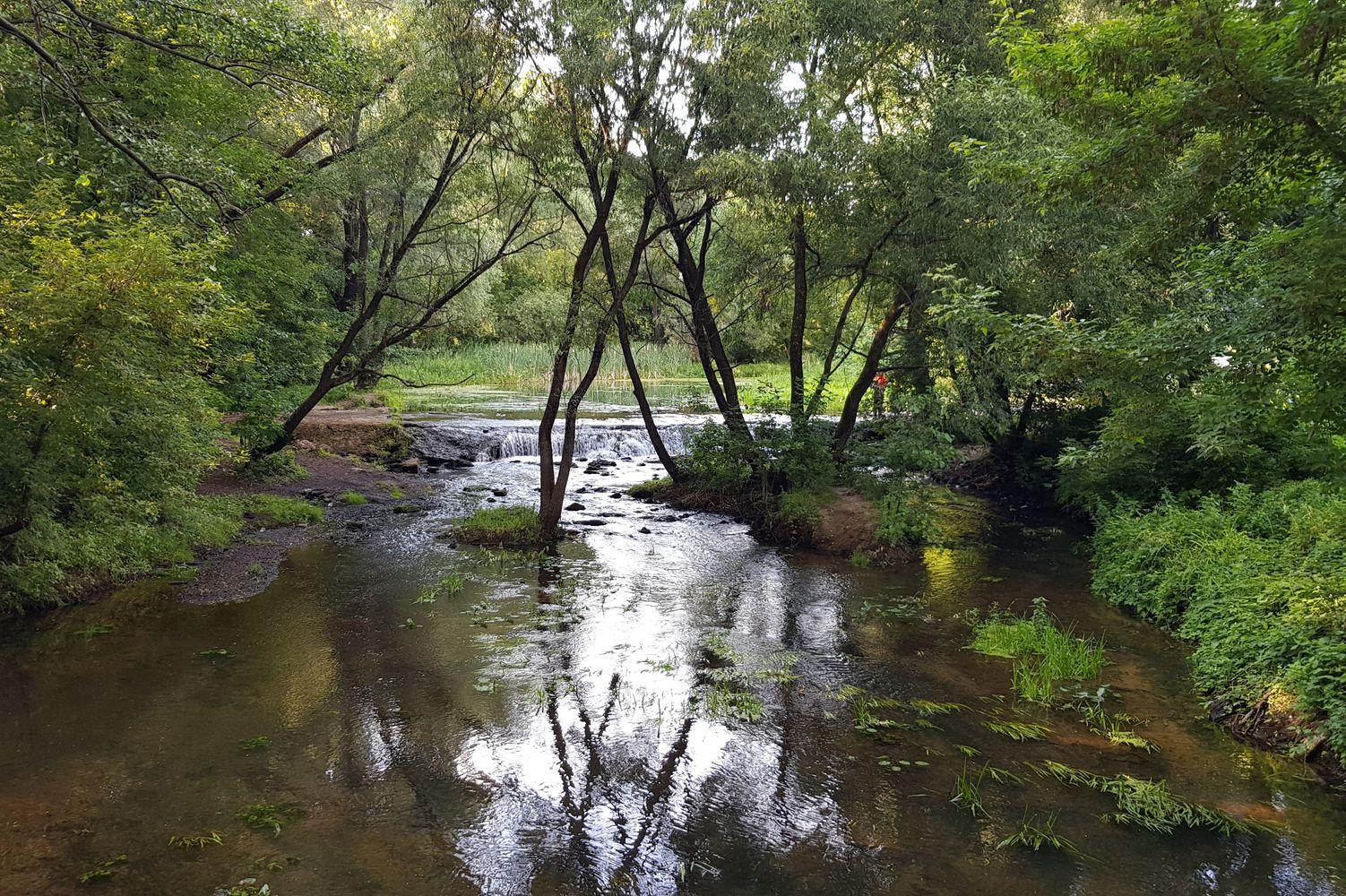 Белоус_(река)