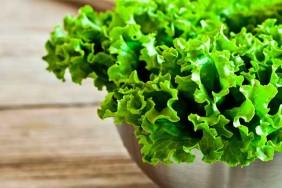 lystya-salatu