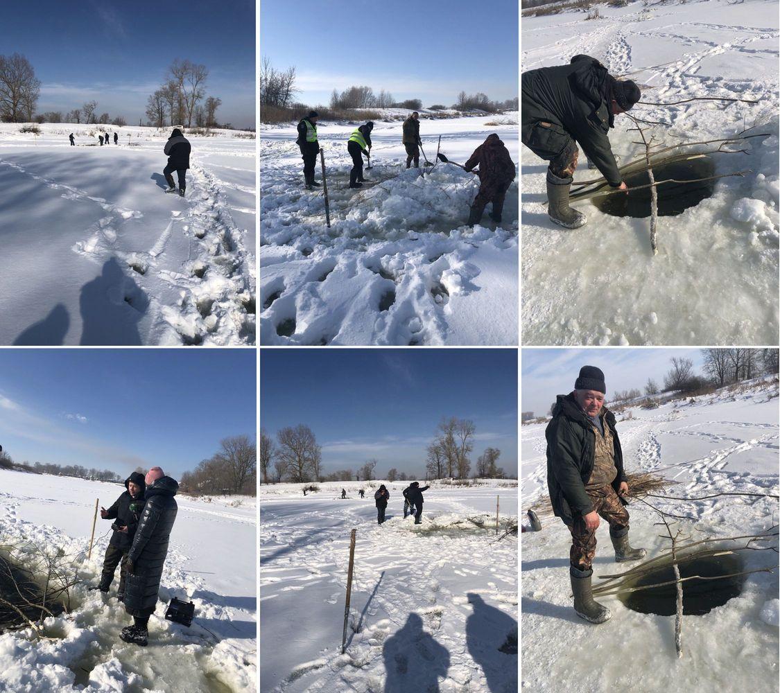 Чернігівські рибоохоронці рятують рибу від задухи (Фото)