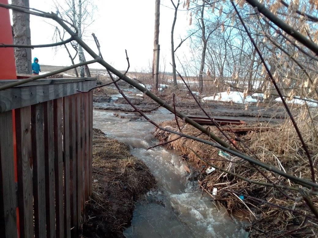 На Чернігівщині потопає ціле село (Фотофакт)