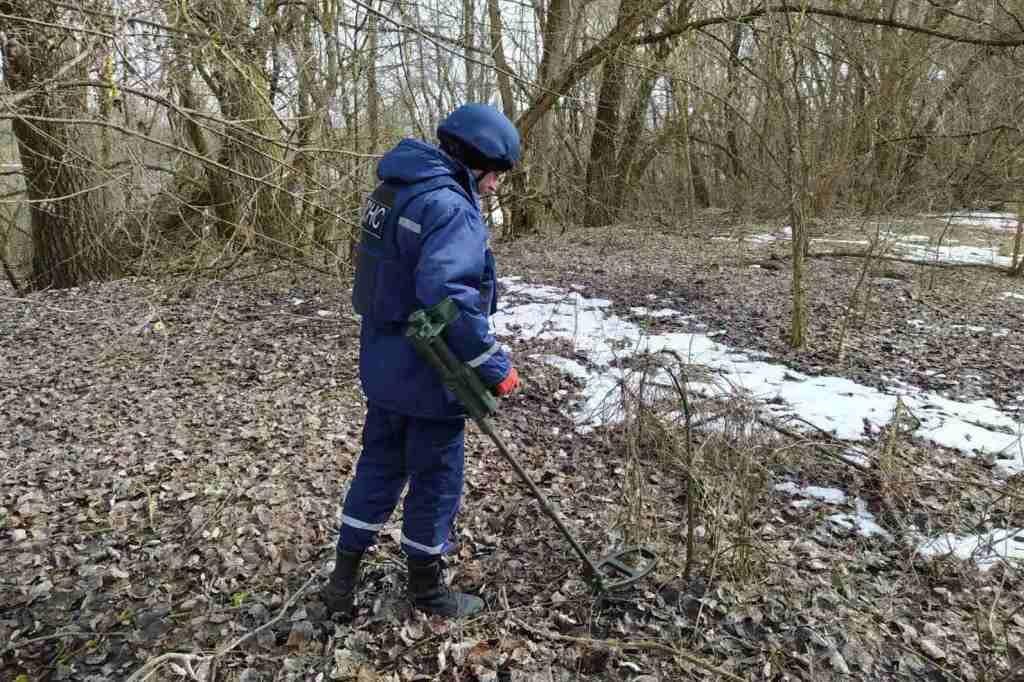 На Чернігівщині піротехніки знищили 8 мінометних мін часів Другої світової війни (Фото)