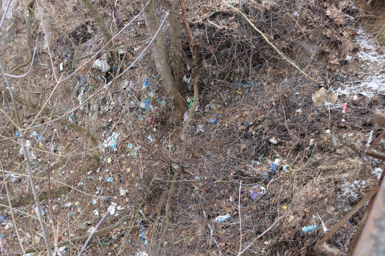 У громаді на Чернігівщині сміття викидають не в контейнери, а до яру (Фото)