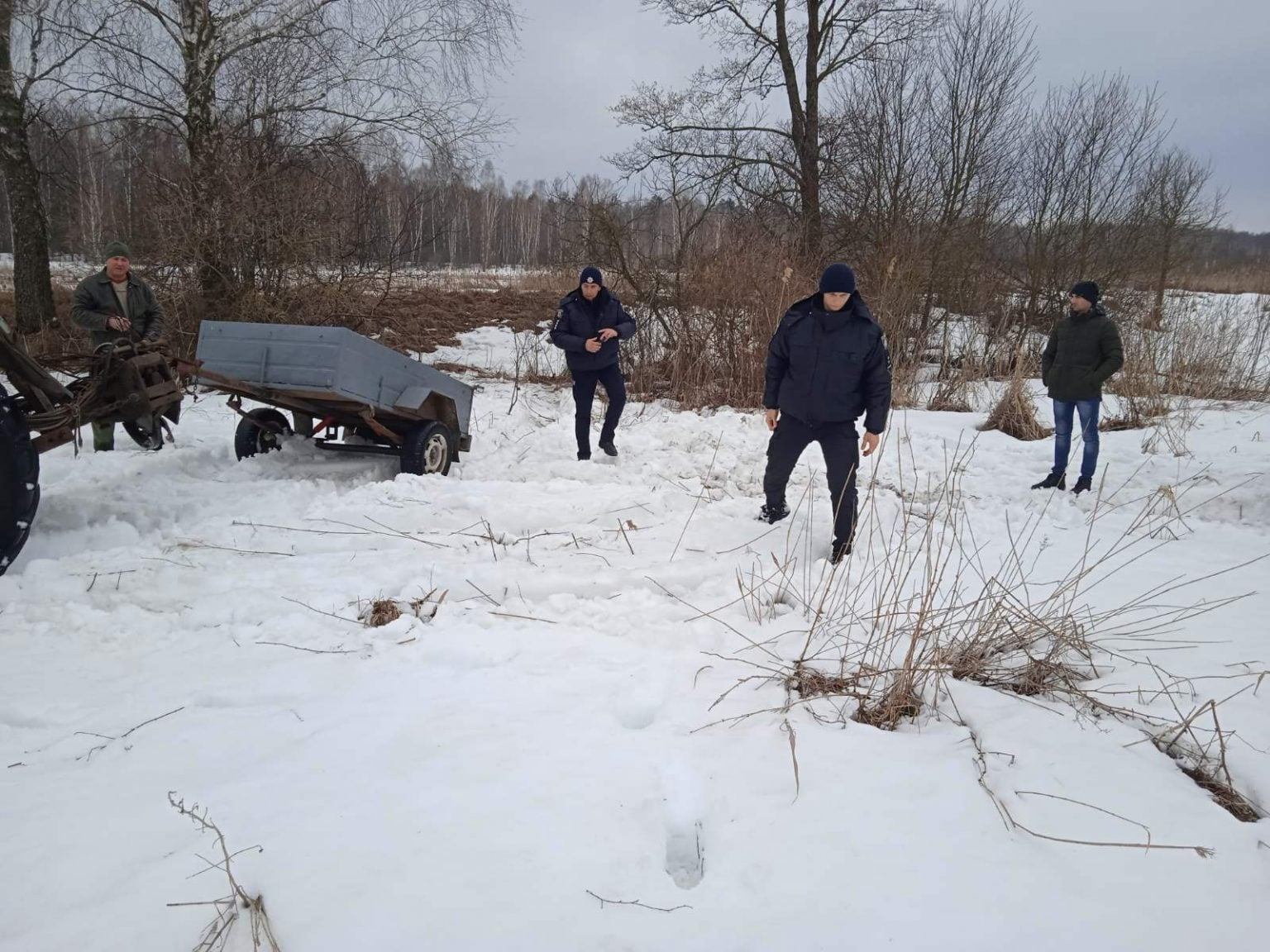 На Чернігівщині браконьєри вбили косулю (Фото)