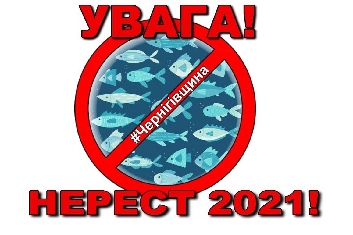 Нерест 2021