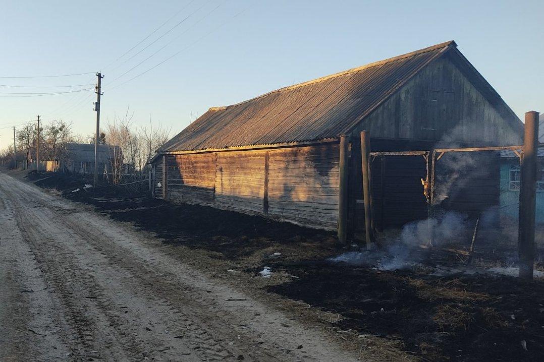 За добу на Чернігівщині сталося 13 пожеж в екосистемах (Фото)