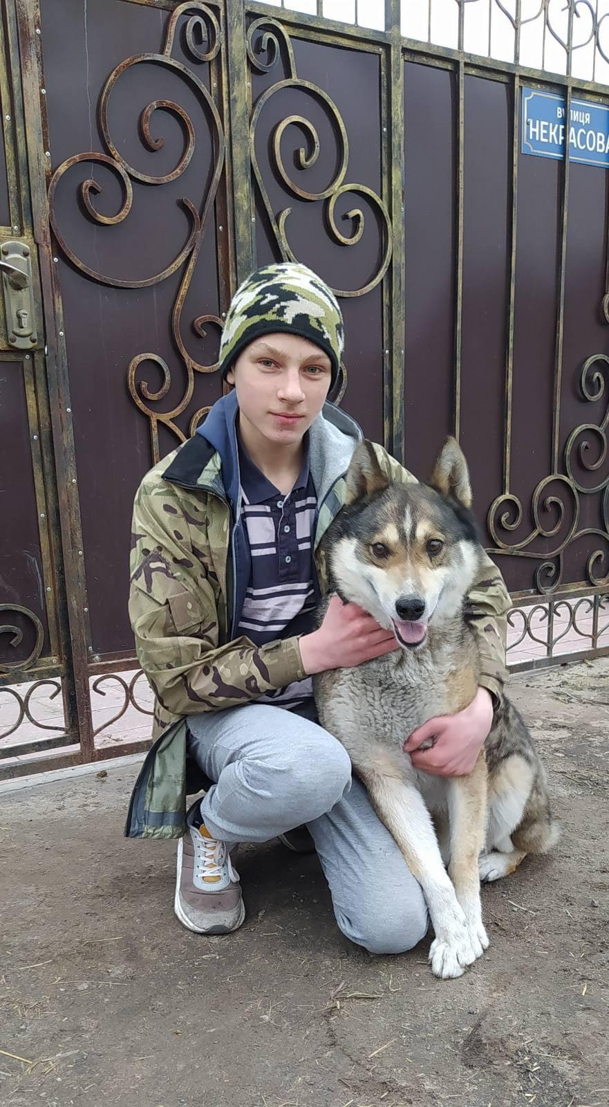 У громаді на Чернігівщині прийомна родина захоплюється собаківництвом (Фото)