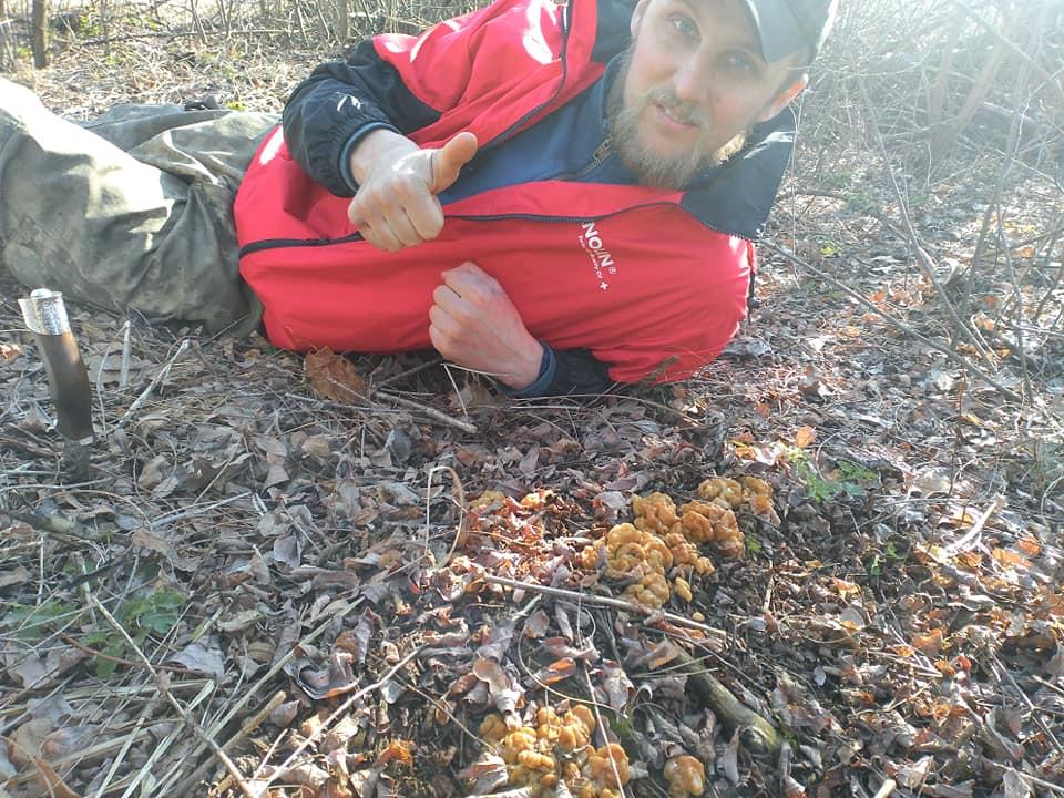 На Чернігівщині вже розпочався грибний сезон (Фотофакт)