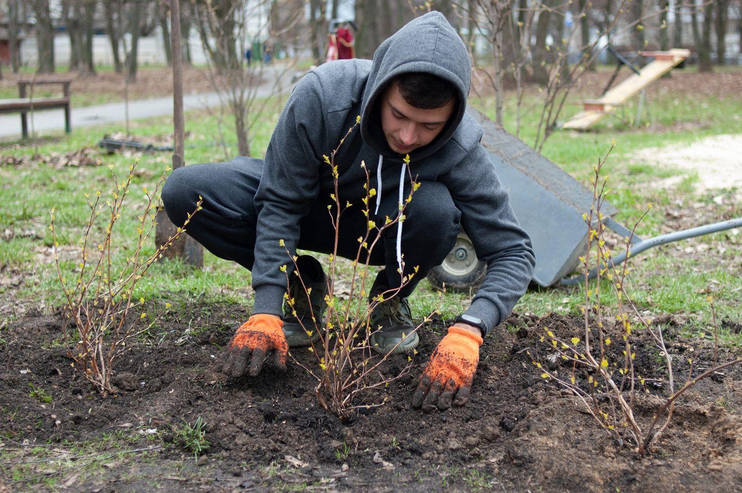 У Березовому гаю висадили нові рослини (Фото)