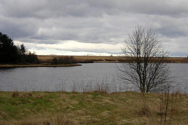 Fannyside_Loch_-_geograph.org.uk_-_139840