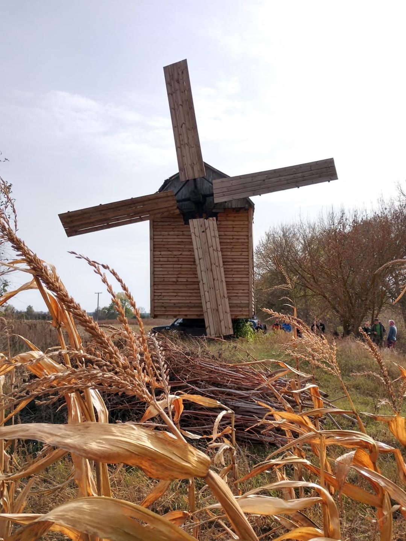 У селі на Чернігівщині сторічну хату біля вітряка перетворять на музей (Фото)