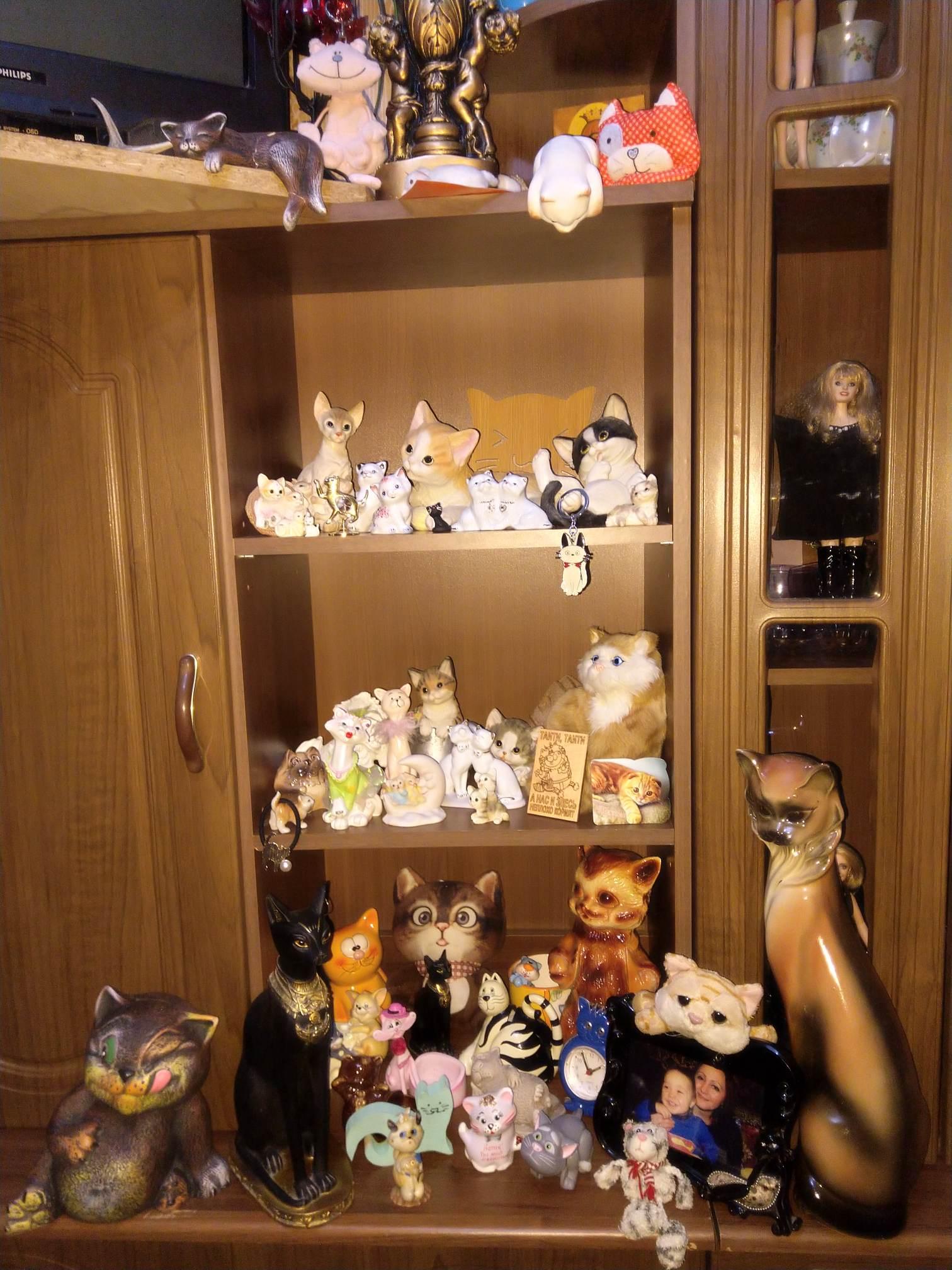 Чернігівка назбирала колекцію котів (Фото)