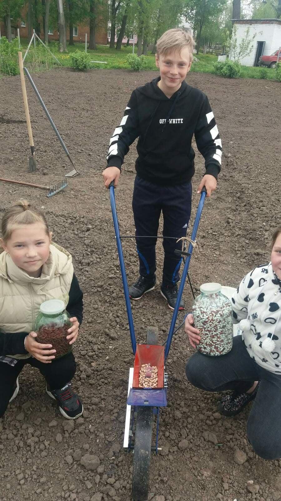 Юні сіверські овочівники садять експериментальні культури та вже збирають перші врожаї (Фото)