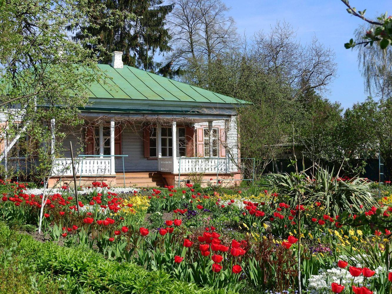 Троянди, іриси, «труби янголів» й агави: в Чернігові є свій квітковий рай (Фото)