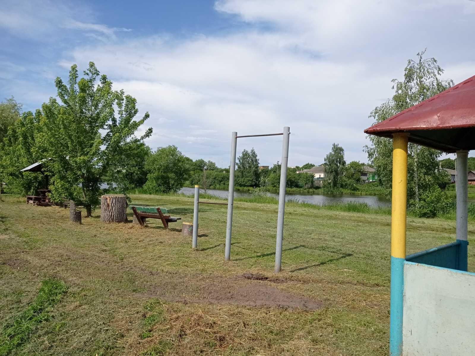 У Городнянському міському парку «виросли» гриби (Фото)