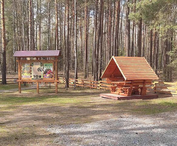 На Чернігівщині лісівники створюють затишні куточки для відпочинку (Фото)