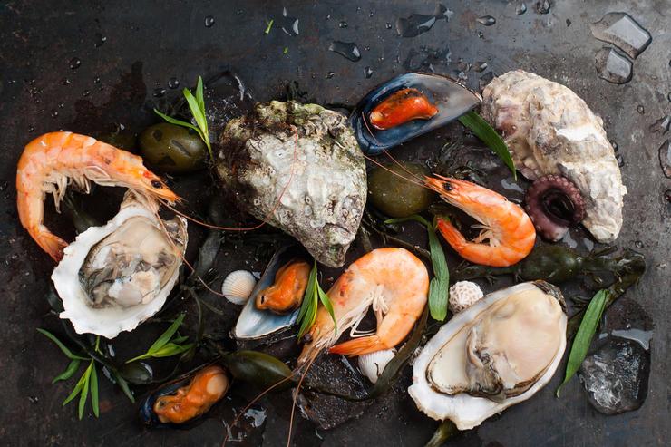 Delicious fresh seafood on dark vintage background, selective focus