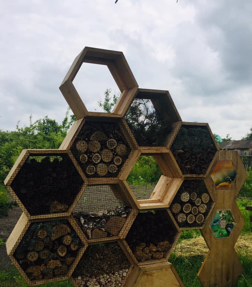На Чернігівщині є готель для бджіл (Фото)